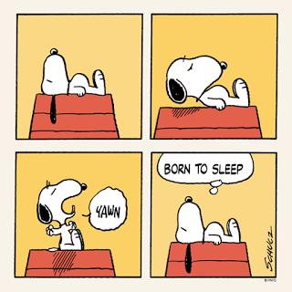 snoopy-sleepy