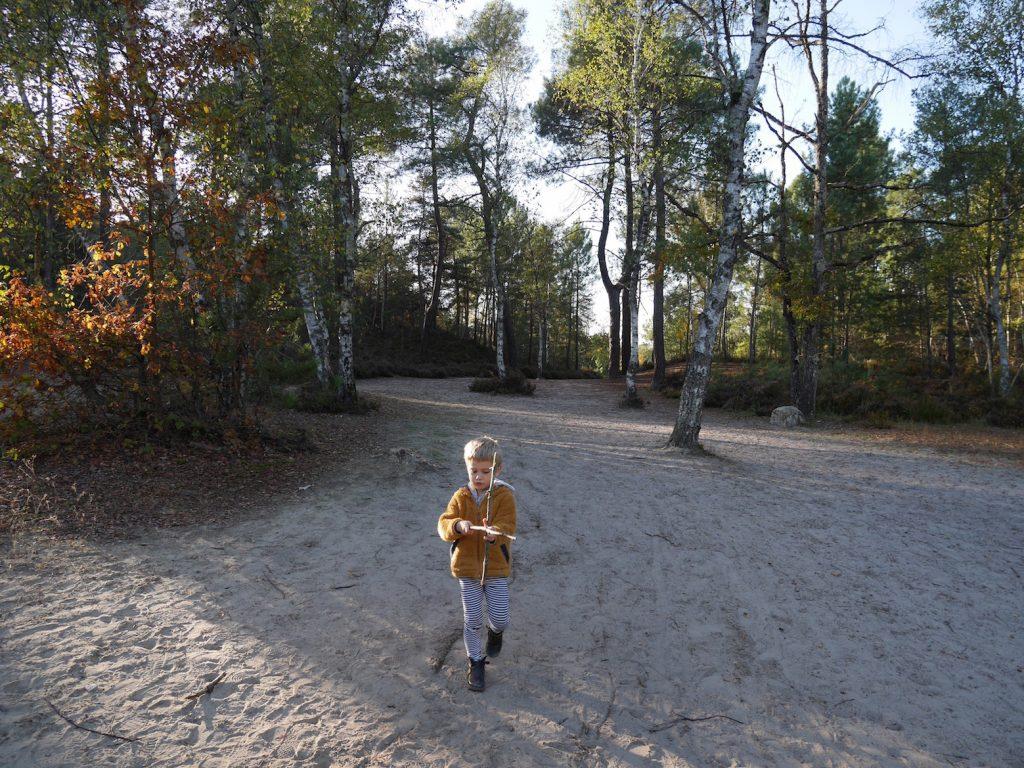 By Paulette x Forêt de Fontainebleau